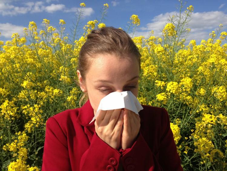 Allergie primaverili e pollini dispersi nell'aria